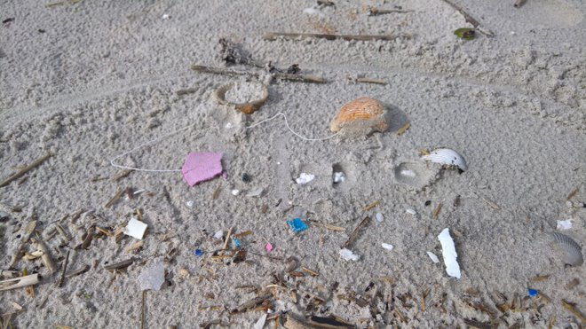 microplastic picture